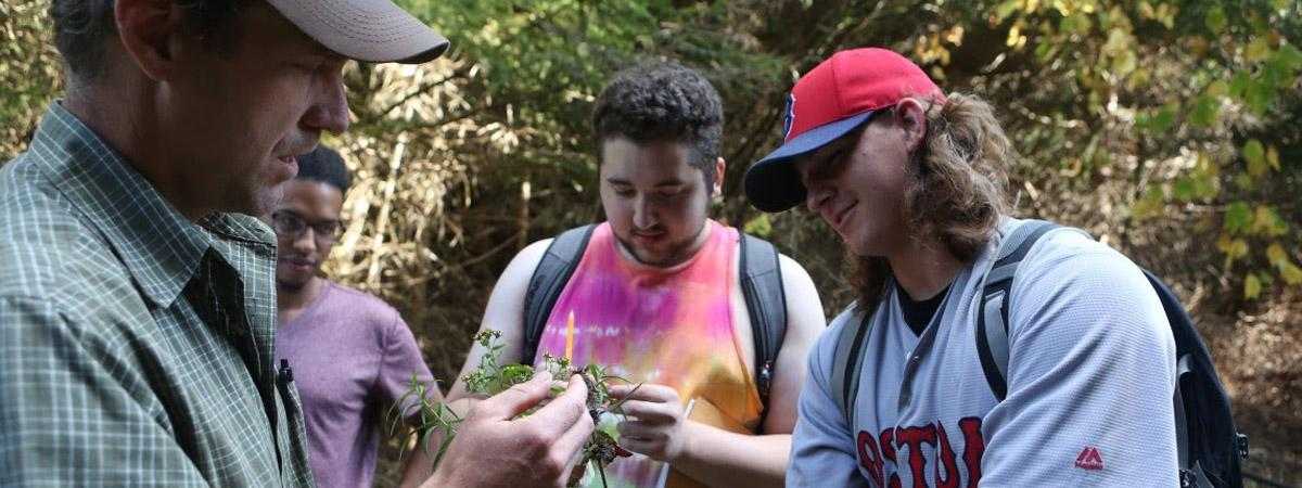 Professor and students examining plant sample