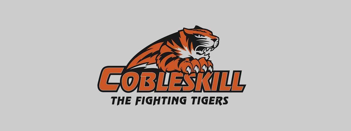 fighting tigers logo