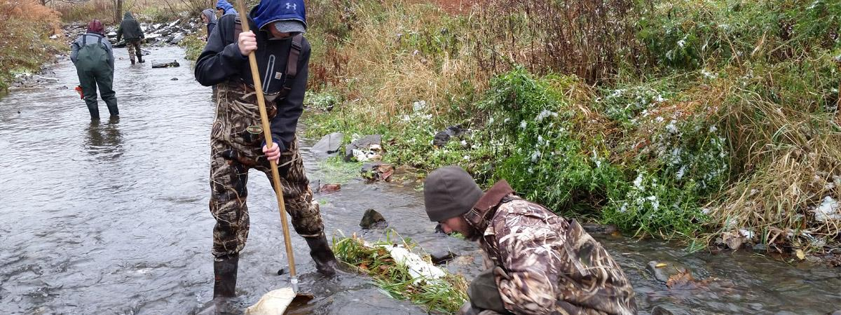 students in stream conducting rapid bioassessment