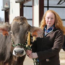 student holding dairy cow by her halter