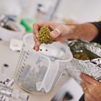 student measuring hops in a beaker
